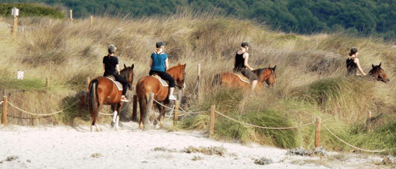 Gruppe beim Reiten am Strand