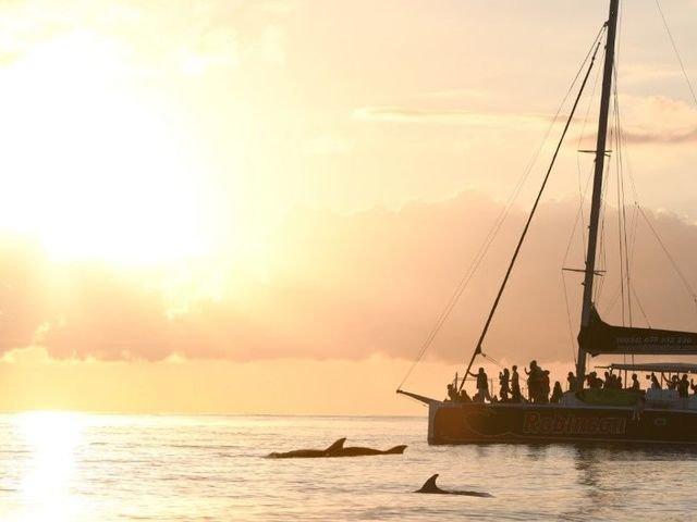 Bootstouren und Katamaran Ausflüge auf Mallorca