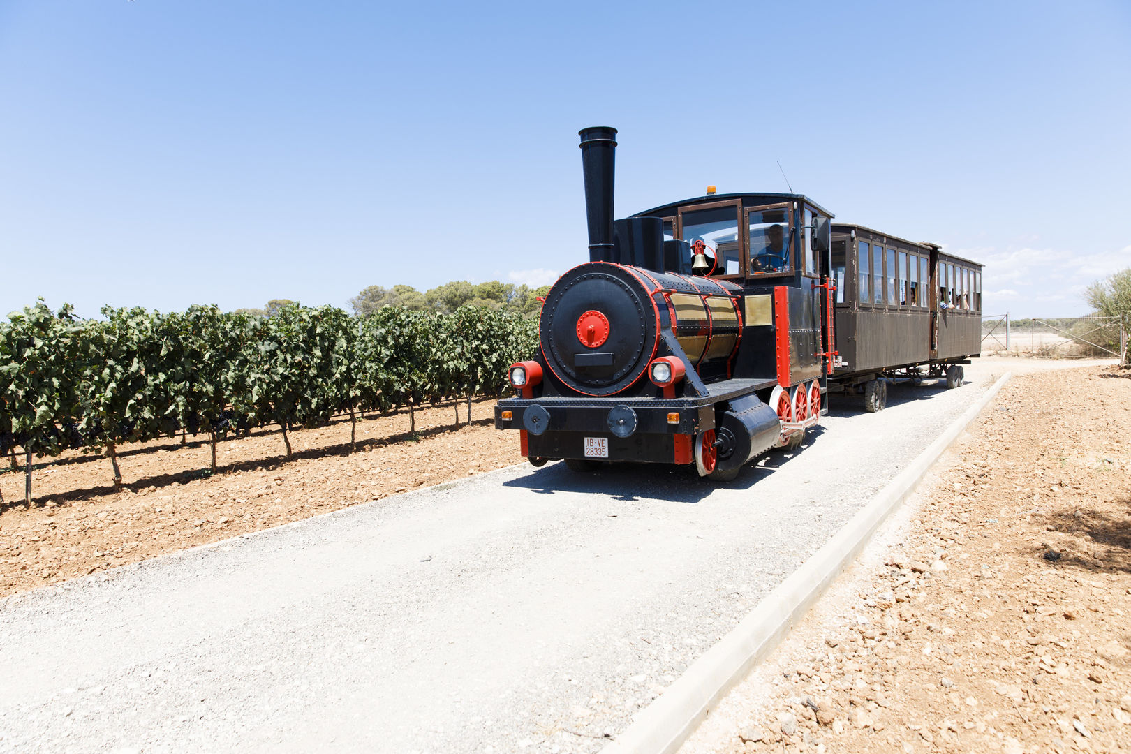 wine tour train in majorca